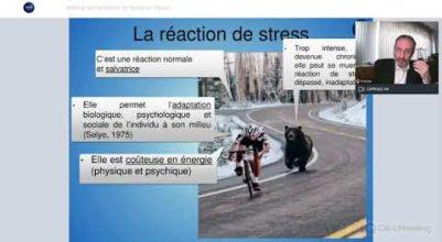 Replay du Webinar sur la Sensibilisation de la Gestion du Stress au travail